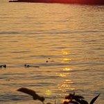 Sophia's Island sunset