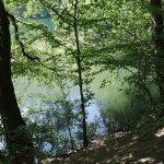 Photo of Yedigoller National Park