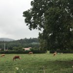 Photo de Entremontes