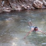 Taking a dip in one of the springs in the reserve