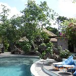 Pool area by the Straw Hut