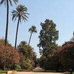 Photo of Jardines de Murillo