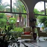 View of one of the luxurios gardens from the reception lobby
