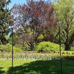 Photo of Niagara Parks Botanical Gardens