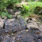 Guldhedens Vattentorn Foto