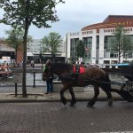Photo de Dorint Airport Hotel Amsterdam