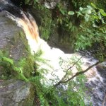 Brecon Beacon waterfalls. We did a few treks. 90mins from our hotel