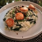 Seared scallops, risotto, spinach, lemon, crispy shallot