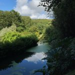 Docton Mill Gardens & Tea Rooms Foto
