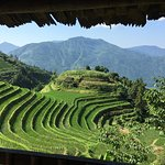The Long Ji rice terraces -- a spectacular sight, not to be missed. Guangxi Province