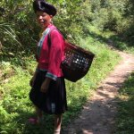 Met a Yao woman on the trail in the rice terraces -- life-changing experience!