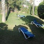 Photo of Vista de Rey