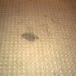 There are pictures of the carpet! Stains and dirty!