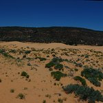 Panorama of the dunes. Try to find the people!