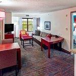 Photo of Residence Inn Minneapolis Plymouth