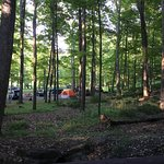 Φωτογραφία: The Great Divide Campground