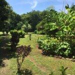 Foto di El Coco Loco Resort