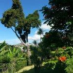 Quinta Das Vistas Palace Gardens Foto