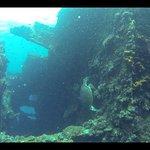 Foto de Adventure Divers Bali