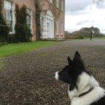 Baxter enjoyed his visit to Enniscoe House