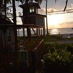 Foto de 1511 Coconut Grove
