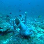 Photo of Mango Dive