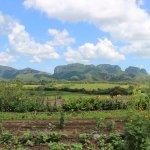Photo of Finca Agroecologica El Paraiso