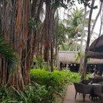 Hotel Riu Creole Photo