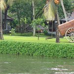 Foto de Kumarakom Lake Resort