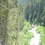 Ziplines over Fitzsimmons Creek