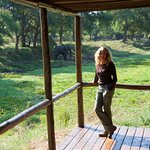 From the deck of our tent, we saw elephants, cape buffalo, waterbuck, impala and more.