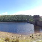 A view on the cycle trail around the derwent