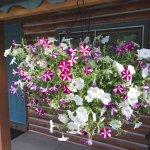 Ouray Inn Foto