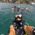 Photo de Octopus Diving