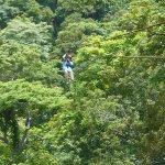 Photo de Da Flying Frog Canopy Tours
