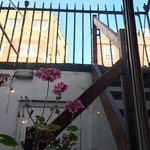 Photo of Bloomsbury Coffee House
