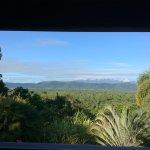 View from the verandah.