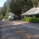 Gambar Cedar Lodge Motel