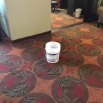 Leak in the lobby? Just put out a bucket. No sign of anyone trying to repair or a caution sign.