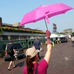 Awesome food awaits - just follow the pink umbrella