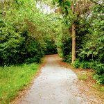 Relaxing and green trails