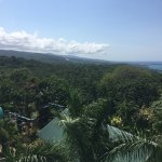 Photo de Rainforest Adventures Jamaica
