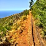 short levada walk