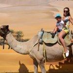 Camel Park Sunny Beach