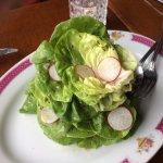butter lettuce with fresh radish