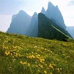 Die Dolomiten-UNESCO Naturerbe