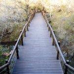 Foto de Three Cities Madikwe River Lodge