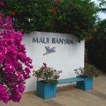 Photo of Maui Banyan Vacation Club