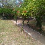 Photo of Camping U Casone