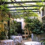 """The small """"open garden"""" of the hotel"""